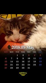 5月鬼束カレンダー 2